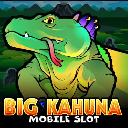 Big Kahuna Banner 4