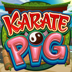 Karate Pig banner 3