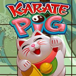 Karate Pig Banner 4