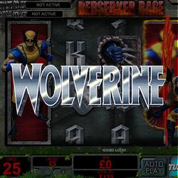 Wolverine Banner 3